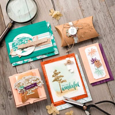 The New Stampin Up Catalog is Here!!!