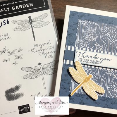Quick and Easy Dragonfly Card using the New Dragonfly Garden Set