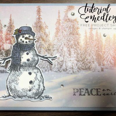 FREE Snow Wonder Card Tutorial!