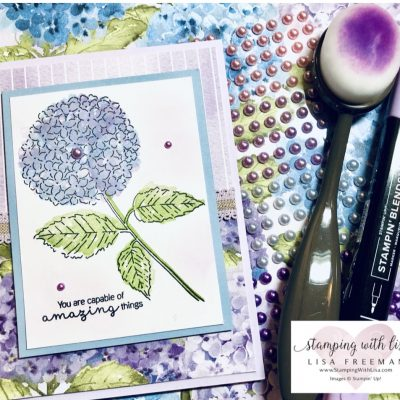 Hydrangea Hill suite February card kit