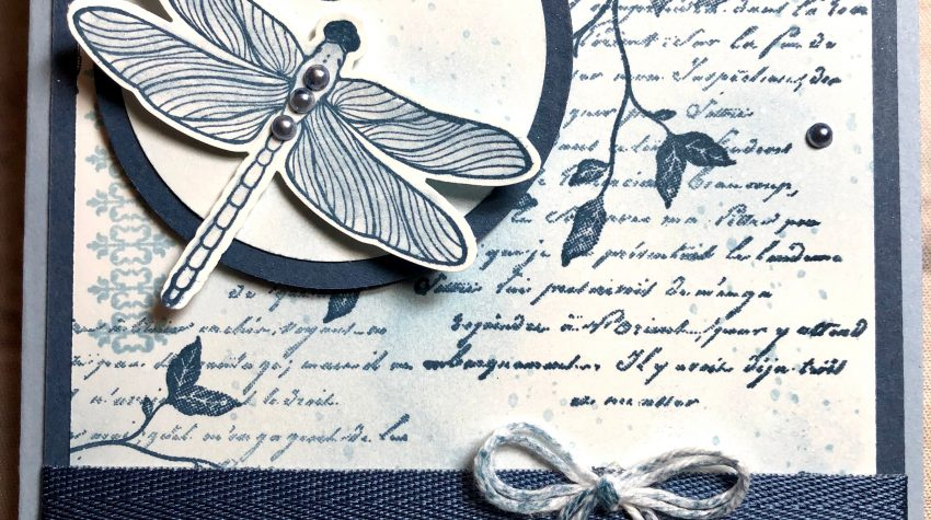 Dragonfly garden meets very versailles stampin up